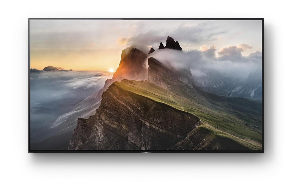 Sony Bravia XBR65A1E 65-inch 4K UHD OLED TV